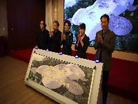 """http://m.cptoday.cn/""""虫子谷国际艺术村""""项目启动,""""自然+艺术+教育""""的实体IP开发"""